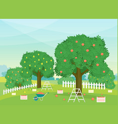 cartoon autumn rural garden outdoor scene vector image