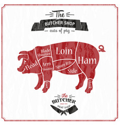 Cut meat set poster butcher diagram scheme vector