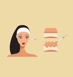 Hyaluronic acid facial injection skin layer beauty vector