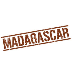 Madagascar brown square stamp vector