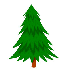 Pine tree in cartoon style isolated on white vector