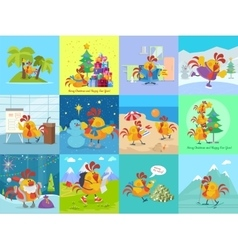 Rooster Bird Adventures Set Greeting Cards vector image