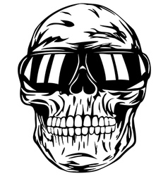 Skull in sunglasses vector