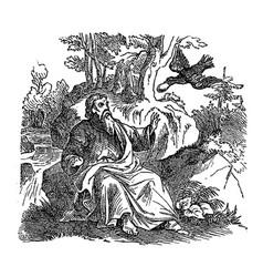 Vintage drawing biblical prophet elijah fed by vector
