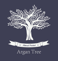 natural tree with foliage argania and argan plant vector image