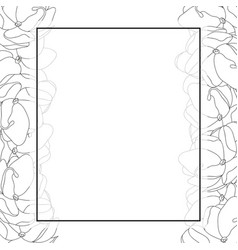 Arabian jasmine outline banner card border vector