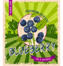 Blueberry retro poster vector image