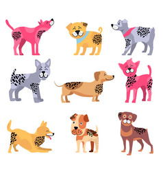 dogs of different breeds icons vector image