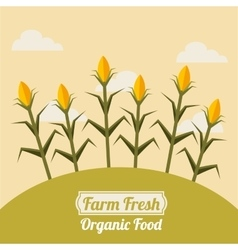farm fresh emblem icons vector image
