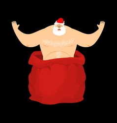 santa claus stripper from open red bag christmas vector image