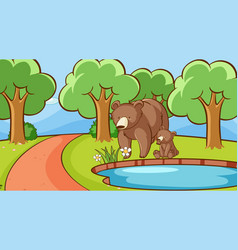 scene with bears pond vector image