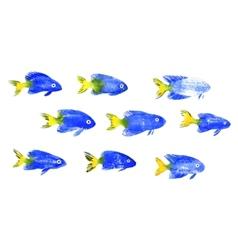Set of watercolor discus fish vector