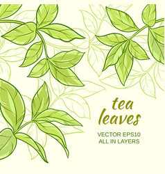 tea leaves background vector image