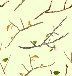 Seamless texture branch various Sprigs twig tree vector image vector image