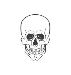 skull modern or sign vector image vector image