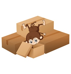 A monkey and boxes vector image