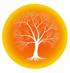 abstract tree with bare branches on an orange vector image