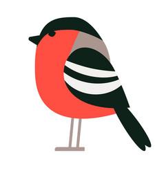 Bullfinch flat vector