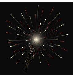 Festive Golden Firework Salute Burst on vector