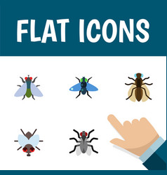 Flat icon housefly set of fly gnat dung and vector