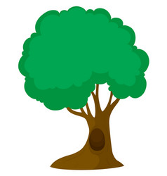 green tree with big trunk vector image
