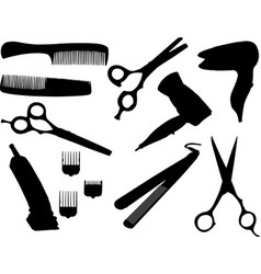 hair equipment vector image