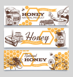 Honey banners hand drawn engraved honeycomb bee vector