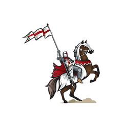 knight templar vector image