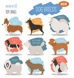 Miniature toy dog breeds set icon isolated on vector