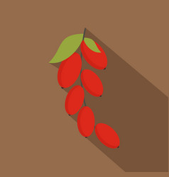 Red berries of cornel or dogwood icon flat style vector