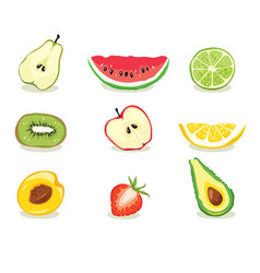 Fruit slices vector