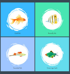 Gold fish and green tiger barb vector