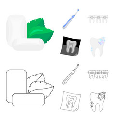 Mint chewing gum with mint leaves toothbrush with vector