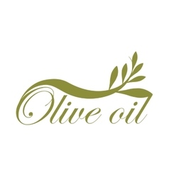 Olive leaves icon Organic and healthy food design vector image
