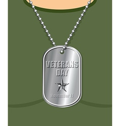 Veterans Day Military Medallion from soldier in vector image