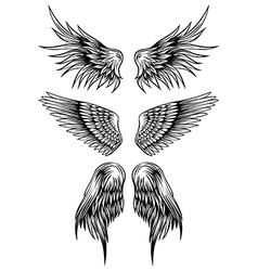Wings set 7 vector