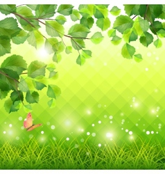 Green Grass Tree Branch Butterfly Background vector image vector image