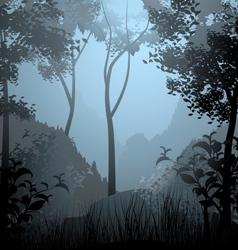 Cloud forest scene vector