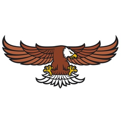 flying eagle vector image vector image