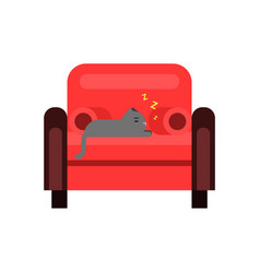 Cute grey cat sleeping soundly on a red sofa home vector