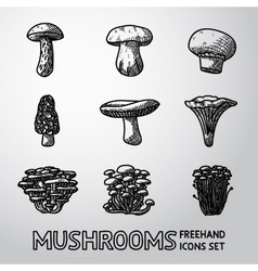 Set freehand mushrooms icons - porcini vector