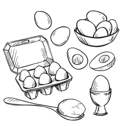 Set of eggs drawings vector