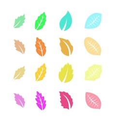 Set of Flat Colorful Leaves vector image