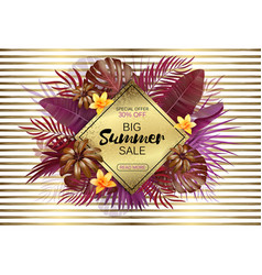 summer sale background with exotic leaves and vector image