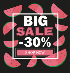summer sale banner with beautiful watermelon vector image