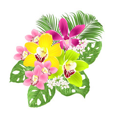 Tropical orchids cymbidium green and purple vector
