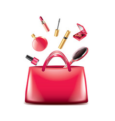 Women bag cosmetics isolated vector