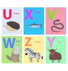 alphabet letters u x v w z y set with animal vector image vector image