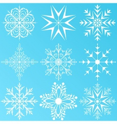 set variation snowflakes isolated vector image