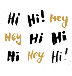 hey and hi signs lettering set hand drawn vector image